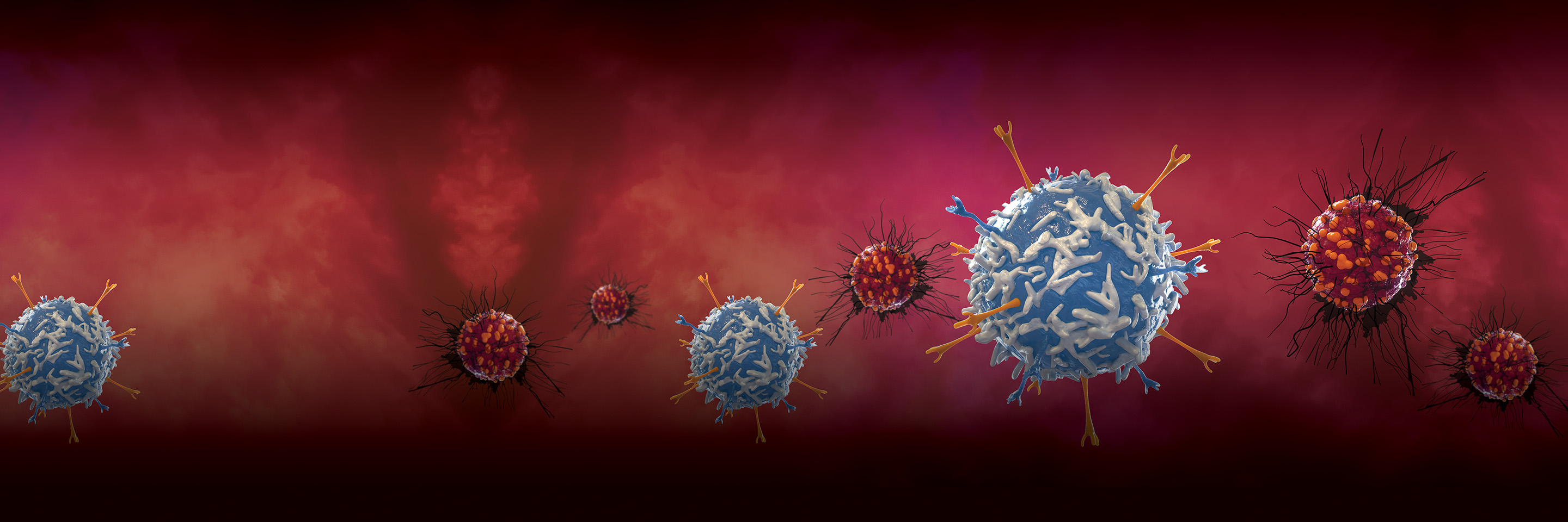 CAR T-cell therapy cells