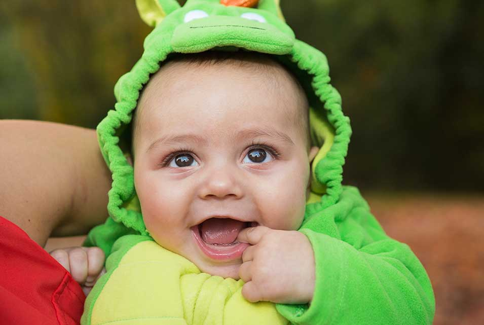 Child in dinosaur fancy dress